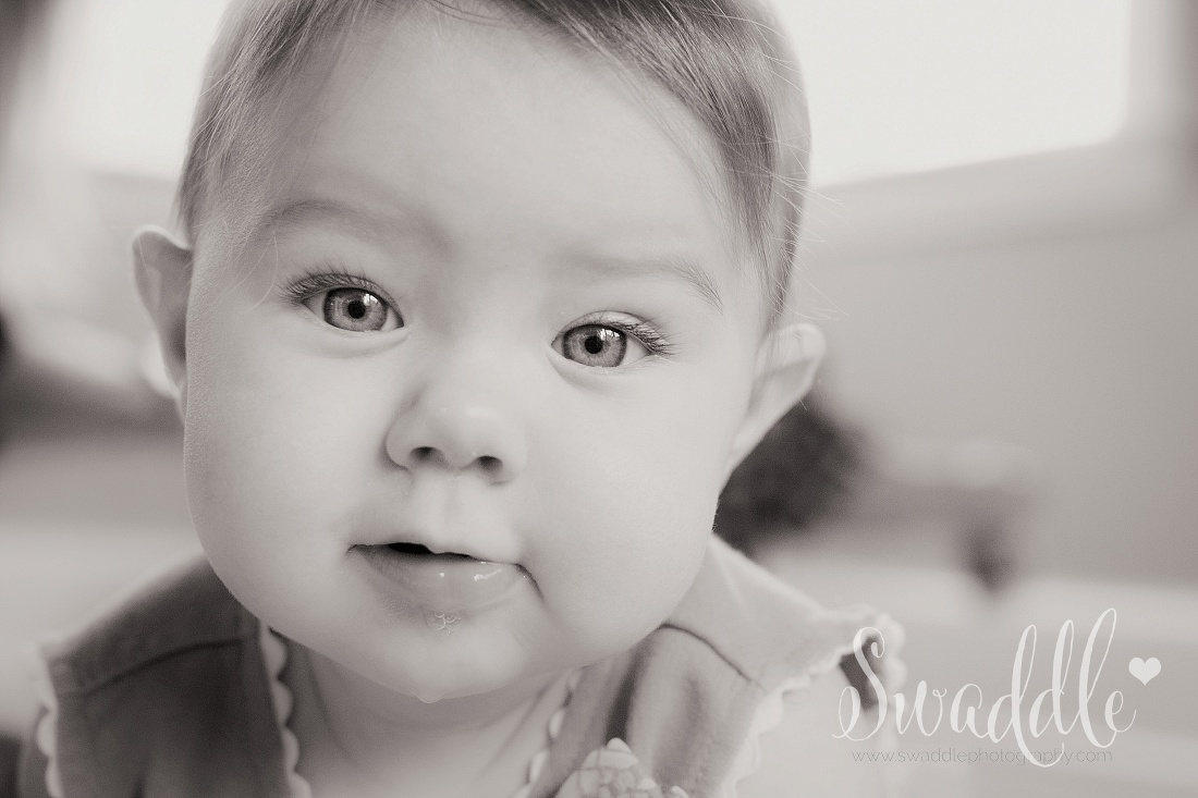 Novato Family Photography | swaddlephotography.com
